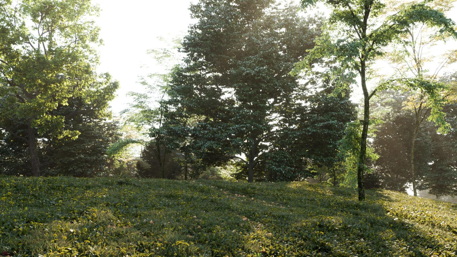 Vegetation_01-1600x900